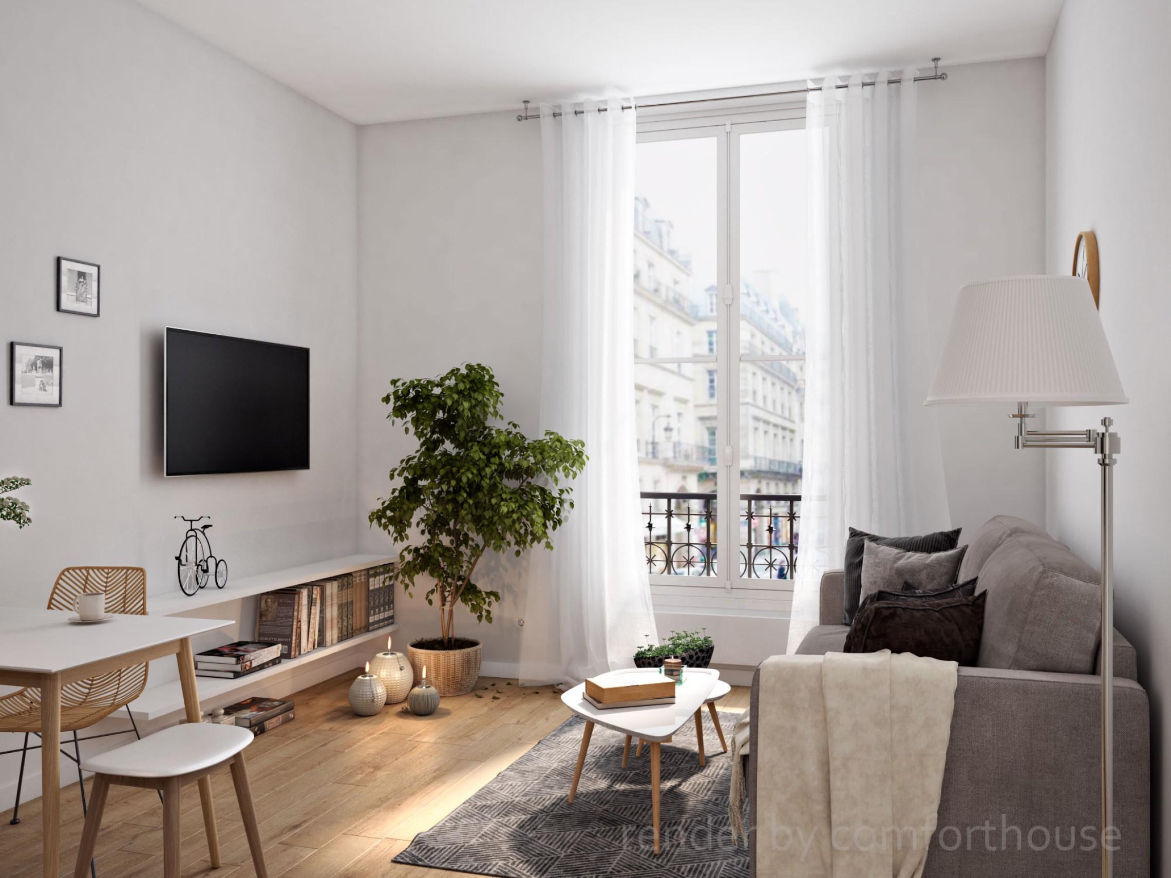Paris interior livingroom