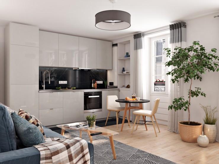 modern apartments living room